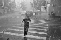 Verlassen des regen ... / ***